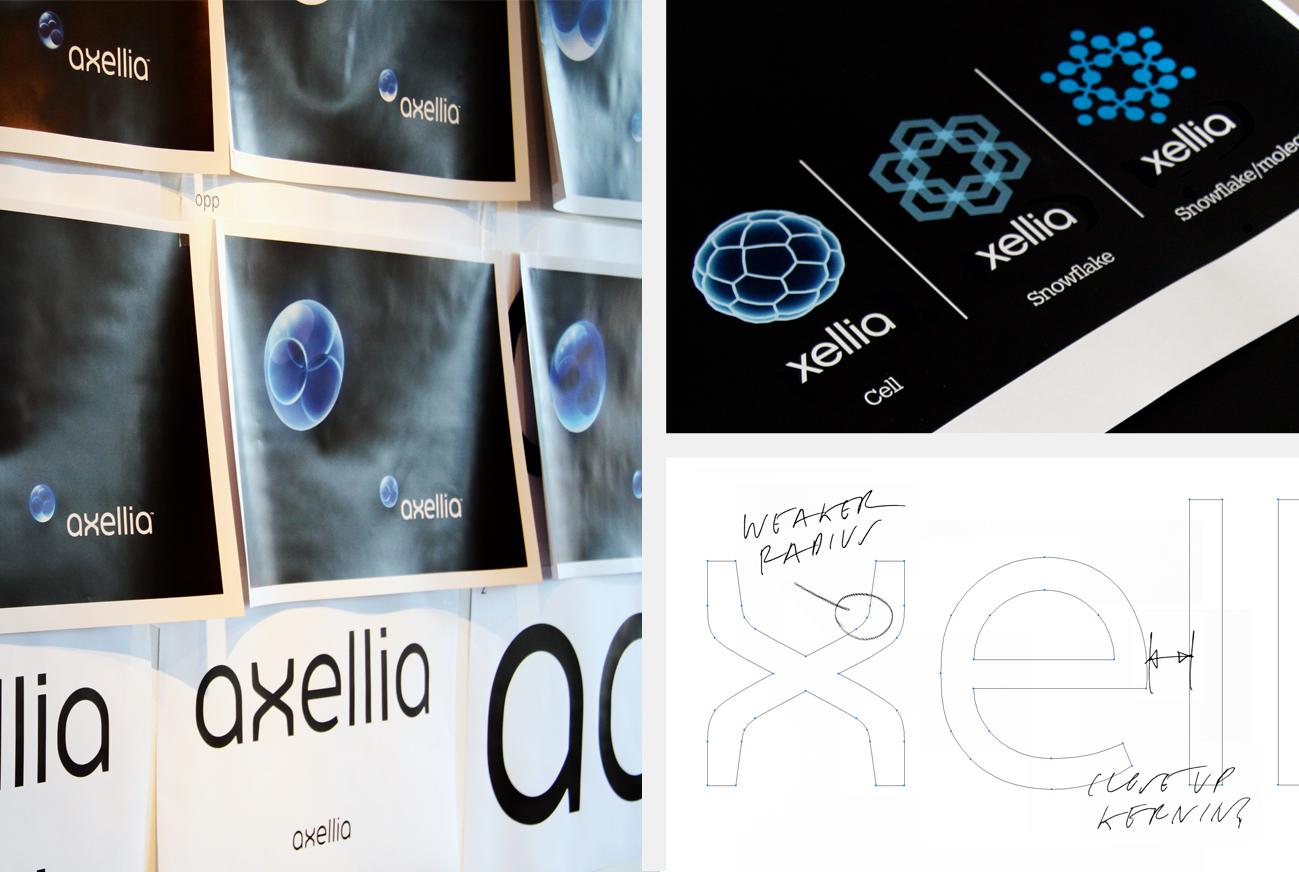 Xellia_process